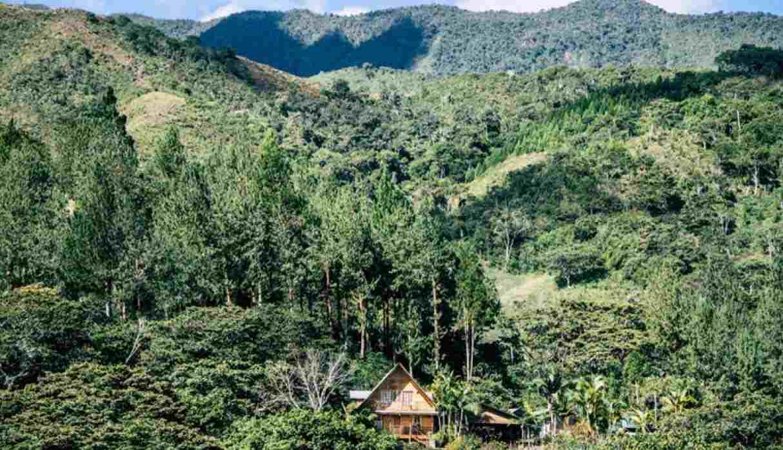 Oxapampa es uno de los destinos más bellos de la selva. Conoce algunos de sus atractivos, los cuales mezclan naturaleza y aventura. (Foto: Shutterstock)