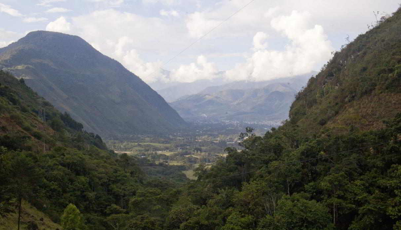 Parque Nacional Yanachaga Chemillén. Cuenta con una superficie de 122 mil hectáreas y se encuentra en los distritos de Oxapampa, Huancabamba, Pozuzo, Villa Rica y Palcazú. Alberga una gran biodiversidad, lo que lo convierte en uno de los parques naturales más importantes del país. (Foto: Ernesto Benavides/PromPerú)