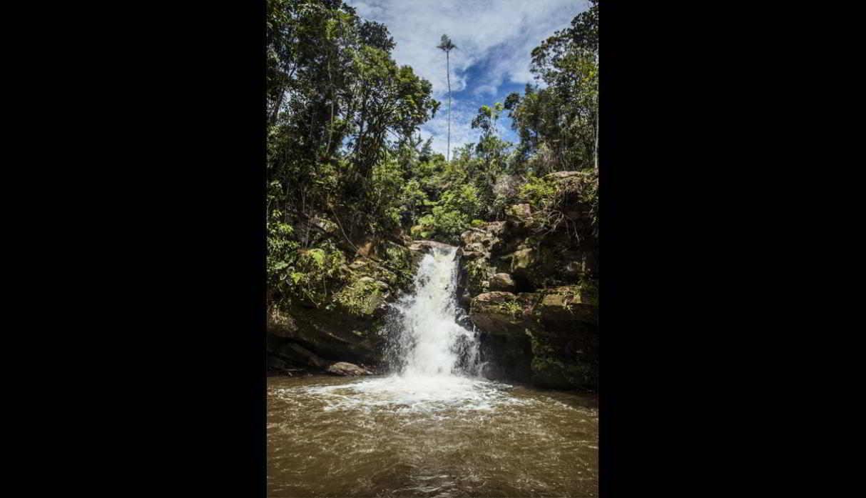 Cascada El León. Se encuentra en el distrito de Villa Rica, en la provincia de Oxapampa. Consta de dos saltos de agua del río Yezú. Estos alcanzan una altura de 4 y 7 metros, respectivamente. (Foto: Fernando Criollo/PromPerú)